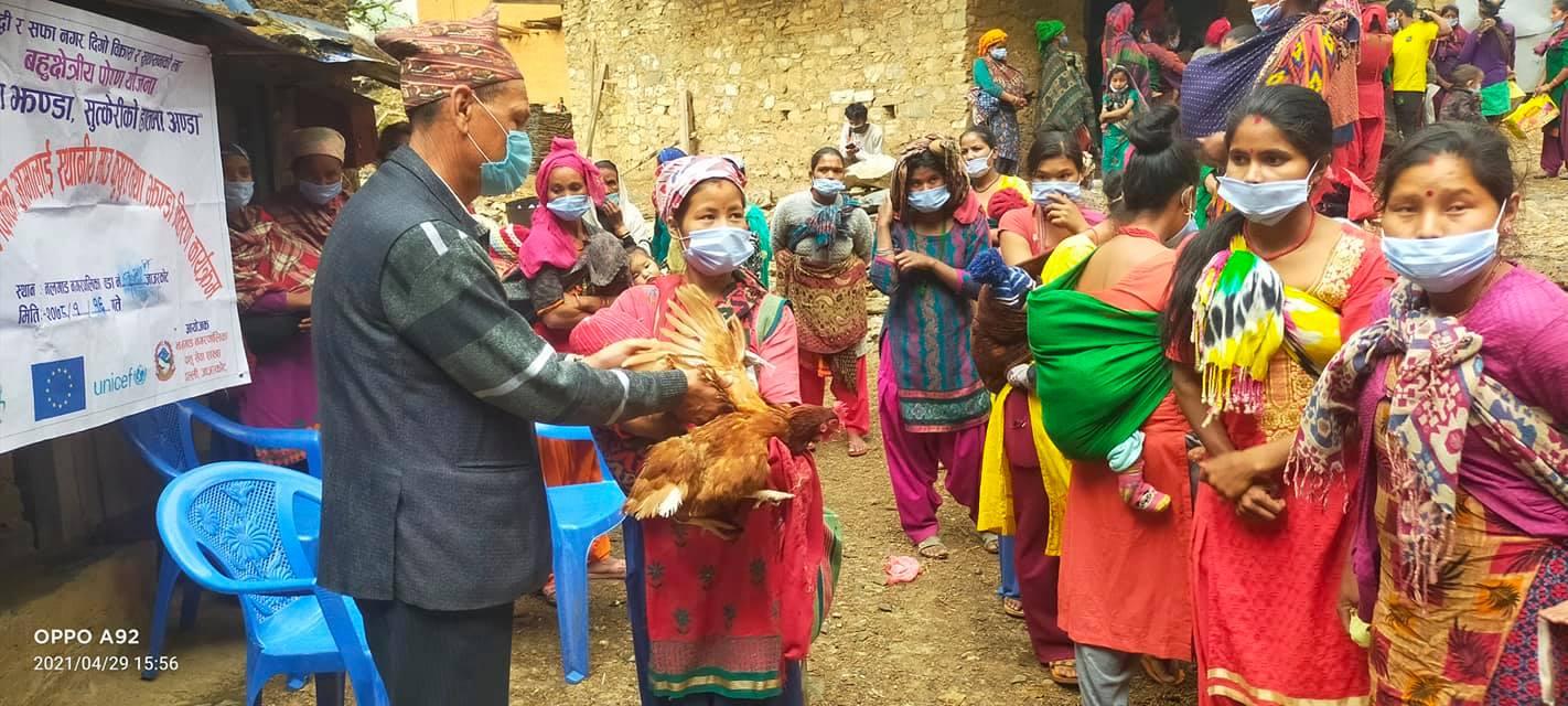 आमाहरुलाइ कुखुरा वितरण गर्नुहुँदै नगरप्रमुख रावल